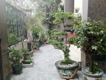 Villa Thao Dien for rent, area compound
