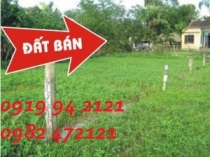 Land for sale on Nguyen Van Huong Street District 2 with many size and price